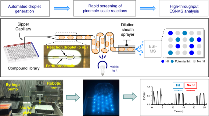 A droplet microfluidic platform for high-throughput photochemical reaction discovery