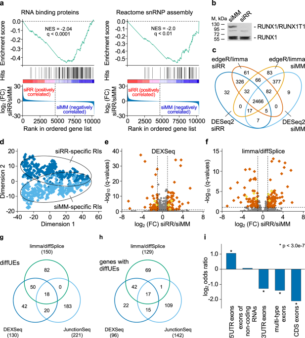 RUNX1/RUNX1T1 mediates alternative splicing and reorganises the transcriptional landscape in leukemia