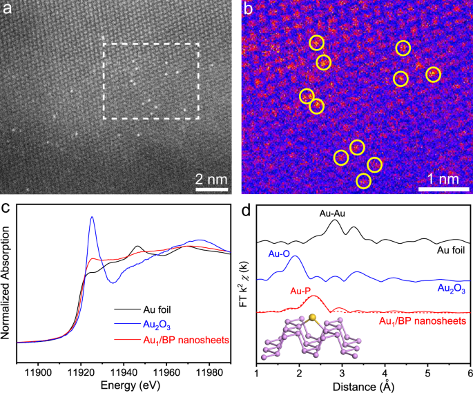 Water enables mild oxidation of methane to methanol on gold single-atom catalysts