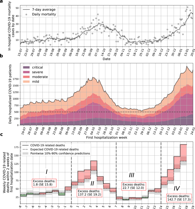 Hospital load and increased COVID-19 related mortality in Israel