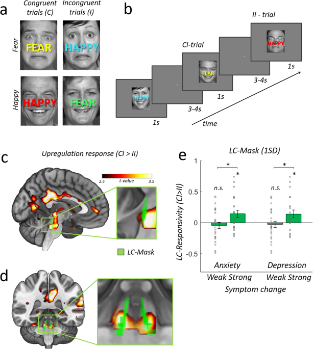 Real-world stress resilience is associated with the responsivity of the locus coeruleus