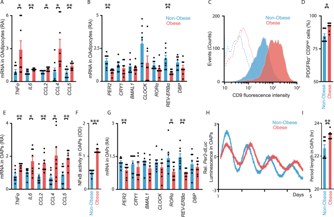 Circadian clock dysfunction in human omental fat links obesity to metabolic inflammation