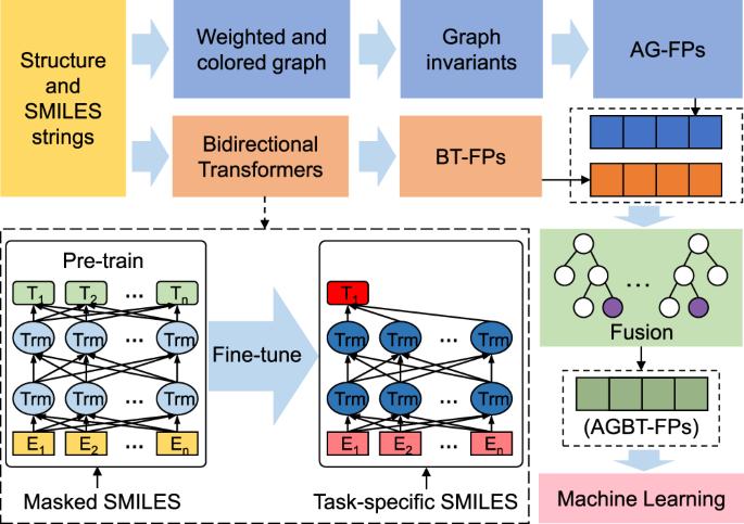 Algebraic graph-assisted bidirectional transformers for molecular property prediction