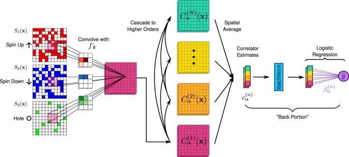 Correlator convolutional neural networks as an interpretable architecture for image-like quantum matter data