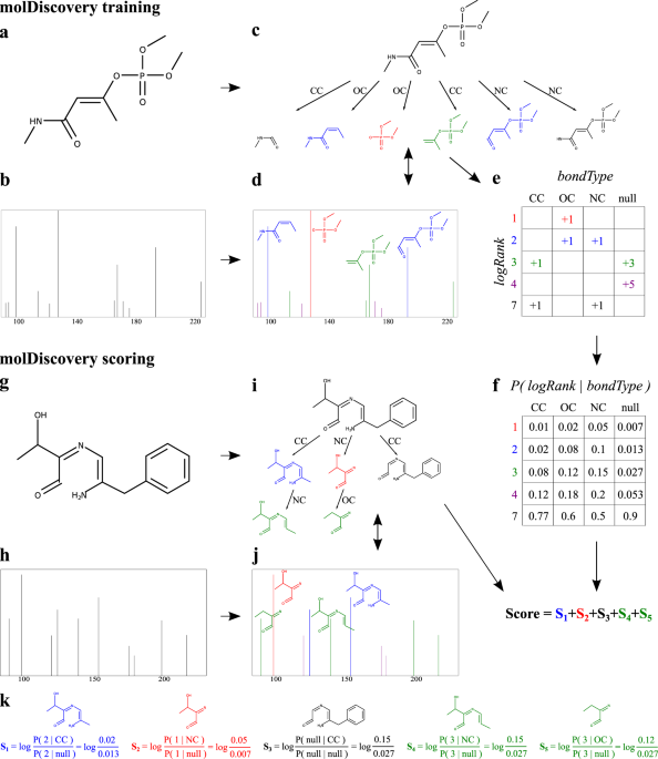 MolDiscovery: learning mass spectrometry fragmentation of small molecules