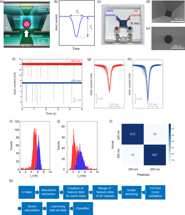 Combining machine learning and nanopore construction creates an artificial intelligence nanopore for coronavirus detection