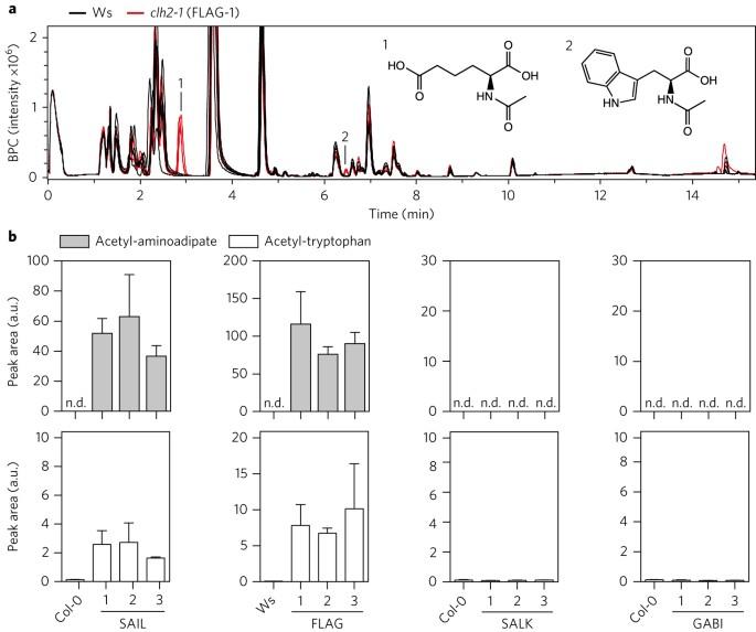 Non-specific activities of the major herbicide-resistance gene BAR ...