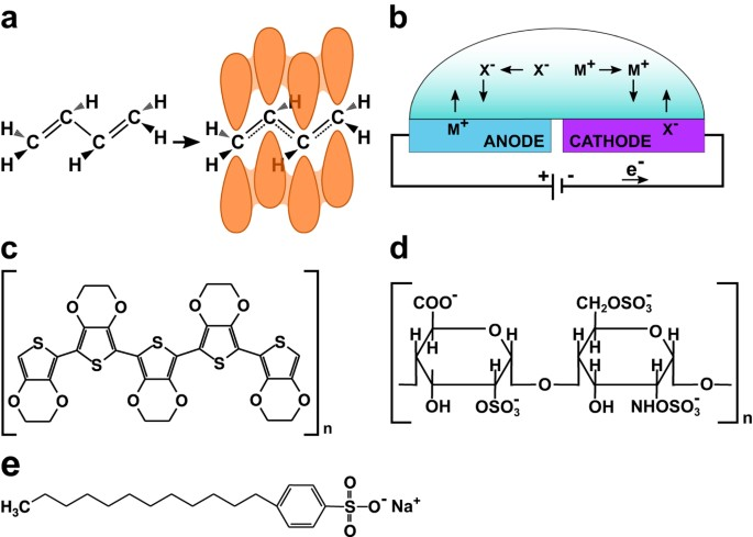 Redox Active Conducting Polymers Modulate Salmonella Biofilm