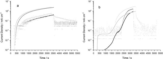 The contribution of hydrogen evolution processes during corrosion time evolution of the absolute value of current associated with hydrogen evolution for aluminium black and aa2024 t3 light grey ccuart Choice Image