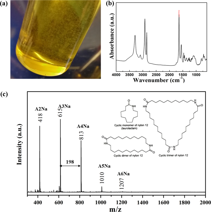 Ageing properties and polymer/fuel interactions of polyamide 12 exposed to (bio)diesel at high temperature
