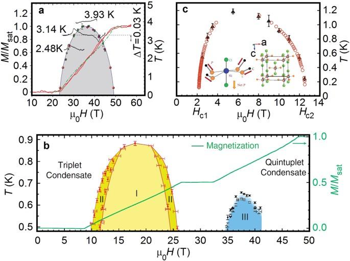 Milestones of low D quantum magnetism