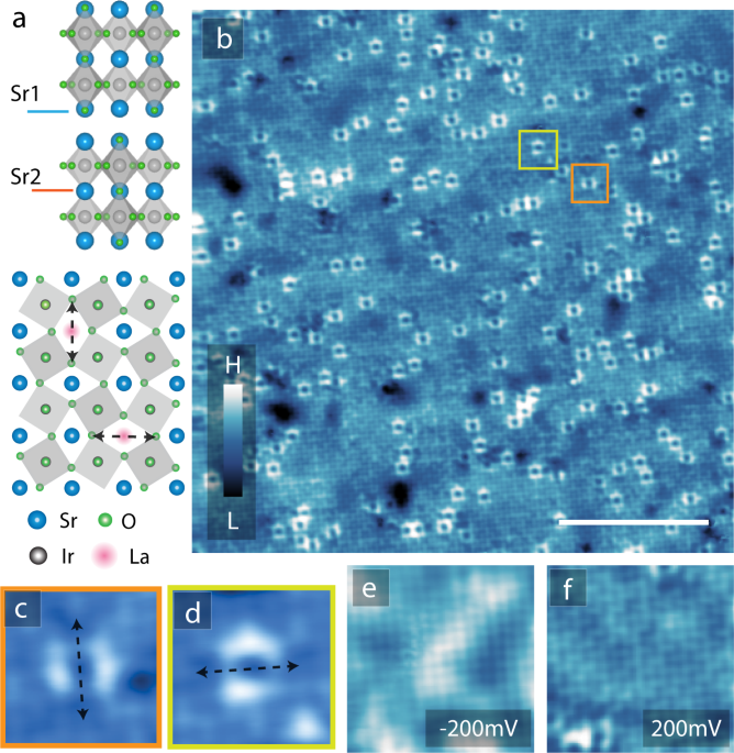 Doping induced Mott collapse and possible density wave instabilities