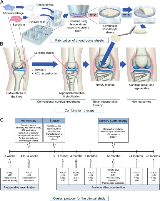 cm tratament clinic articular