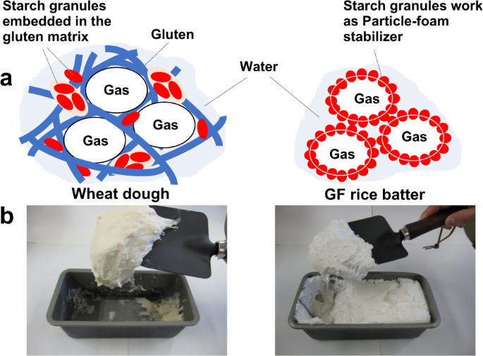 Recent practical researches in the development of gluten