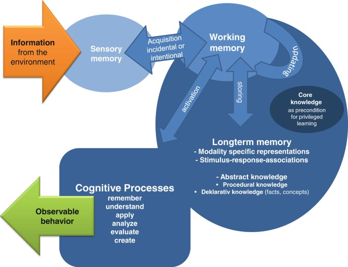 Individual differences in the learning potential of human