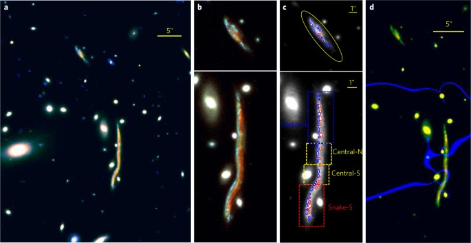 The Nature Of Giant Clumps In Distant Galaxies Probed By The Anatomy