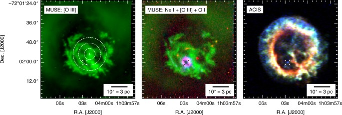 Identification of the central compact object in the young