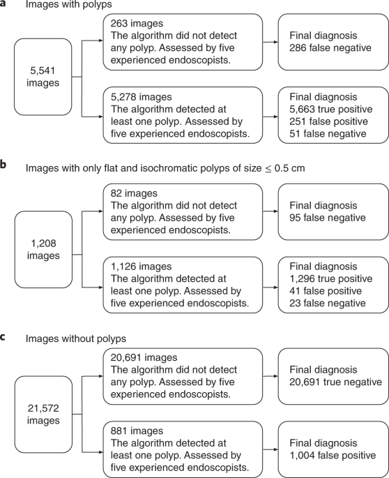 flipboard colonoscopy development and validation of a