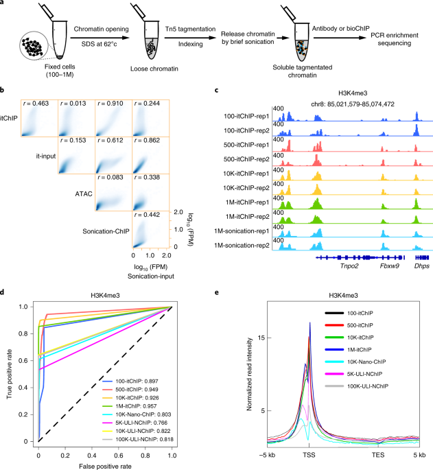 Profiling chromatin states using single-cell itChIP-seq