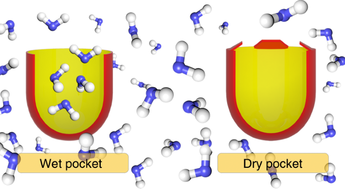 Spontaneous Drying Of Non Polar Deep Cavity Cavitand Pockets In Aqueous Solution Nature Chemistry