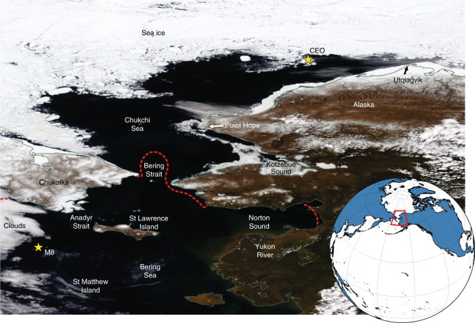 Evidence suggests potential transformation of the Pacific Arctic ecosystem is underway