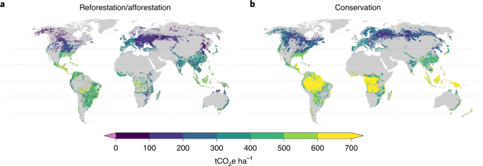 Prioritizing forestation based on biogeochemical and local biogeophysical impacts - Nature Climate Change
