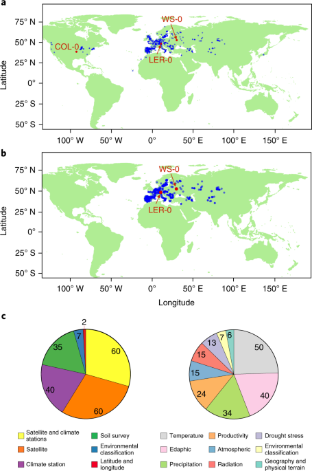 Study Genes Dwarf Environment In >> Phenotypic And Genome Wide Association With The Local Environment Of