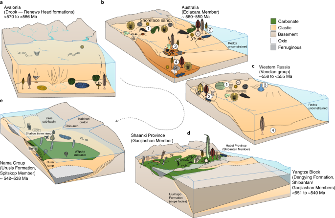 Integrated records of environmental change and evolution
