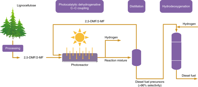 Visible-light-driven coproduction of diesel precursors and hydrogen from lignocellulose-derived methylfurans