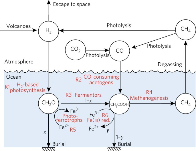 Effects of primitive photosynthesis on earths early climate system 1 schematic diagram of the primitive biosphere considered in this study ccuart Images