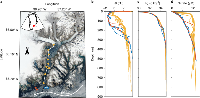 Nutrient release to oceans from buoyancy-driven upwelling at Greenland tidewater glaciers