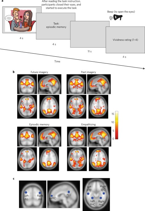 The Default Network And The Combination Of Cognitive Processes That
