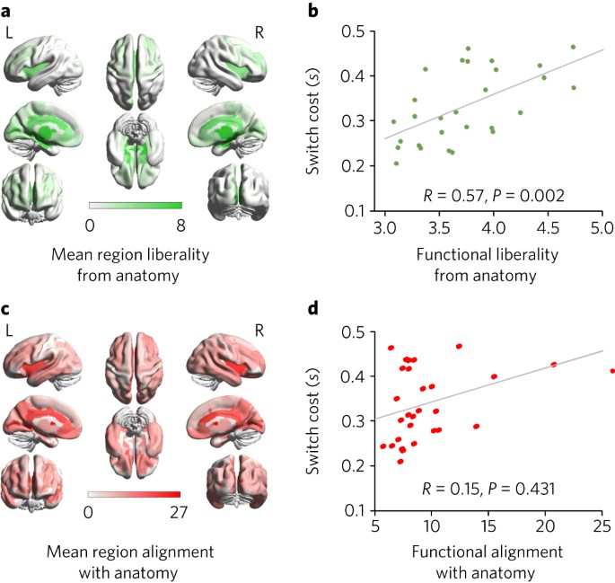 Functional alignment with anatomical networks is associated with ...