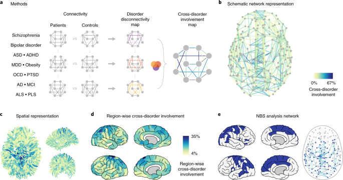 Shared vulnerability for connectome alterations across psychiatric