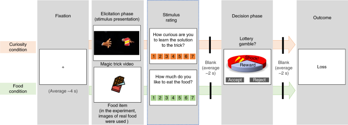Shared striatal activity in decisions to satisfy curiosity and hunger at the risk of electric shocks