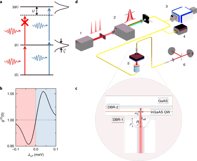 Emergence Of Quantum Correlations From Interacting Fibre