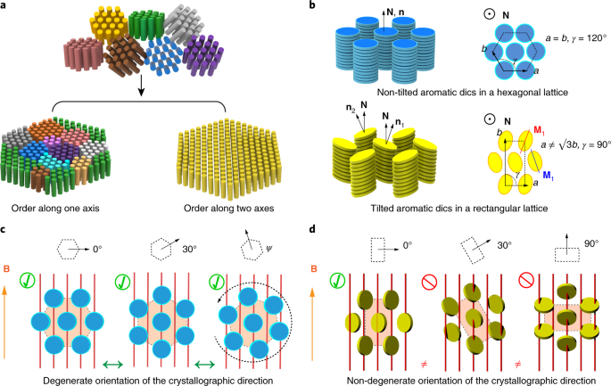 Single crystal texture by directed molecular self-assembly
