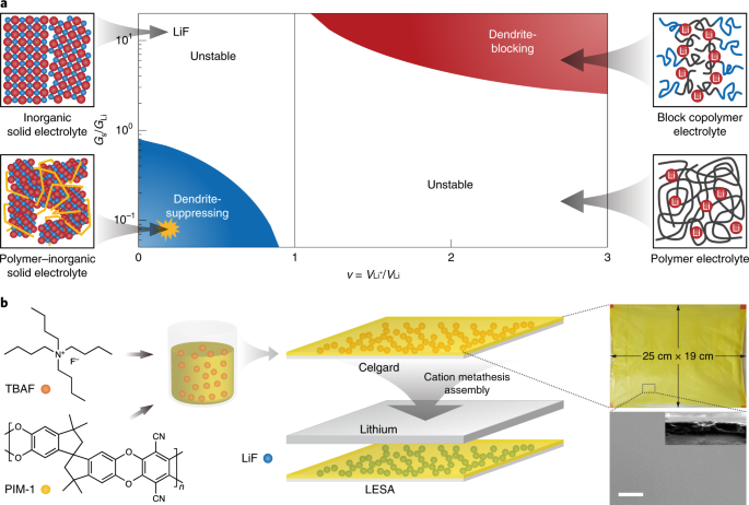 Universal chemomechanical design rules for solid-ion conductors to prevent  dendrite formation in lithium metal batteries   Nature Materials