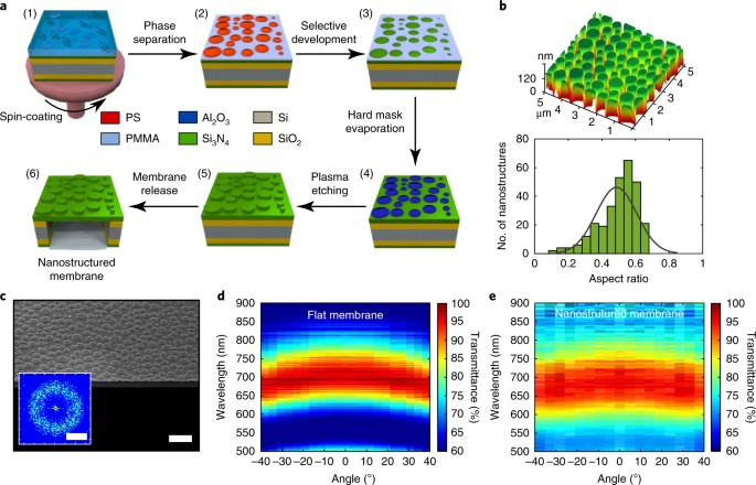 a fabrication flow of the bio inspired nanostructured si3n4 membrane 1 spin coating of a blend solution of pmma and ps in mek on