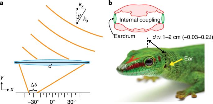Subwavelength angle-sensing photodetectors inspired by