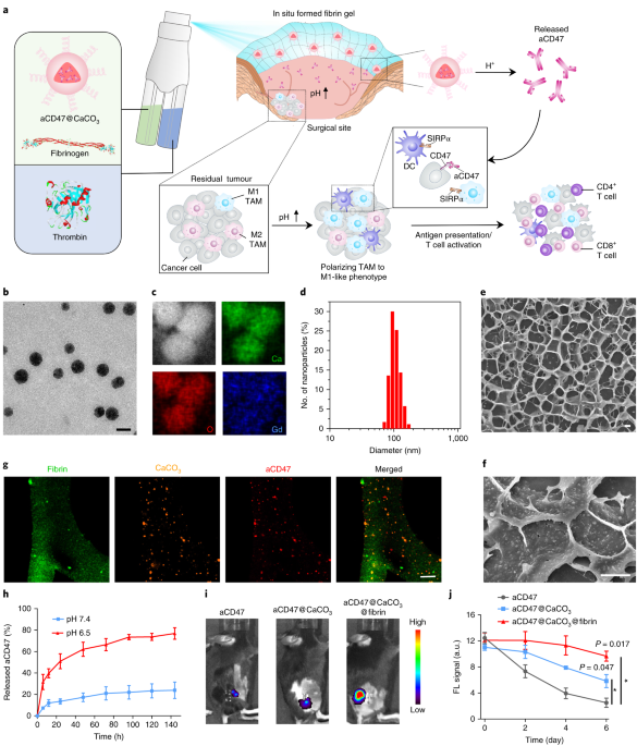 In situ sprayed bioresponsive immunotherapeutic gel for post-surgical cancer treatment