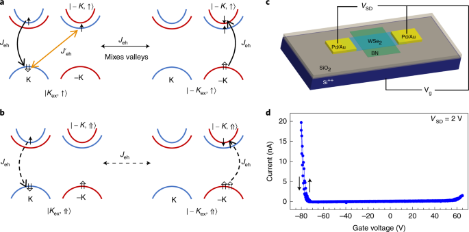 QnA VBage Optical initialization of a single spin-valley in charged WSe 2 quantum dots