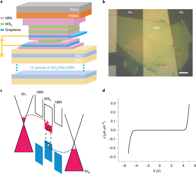 A room-temperature polariton light-emitting diode based on monolayer W