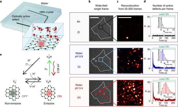 Direct observation of water-mediated single-proton transport between hBN surface defects