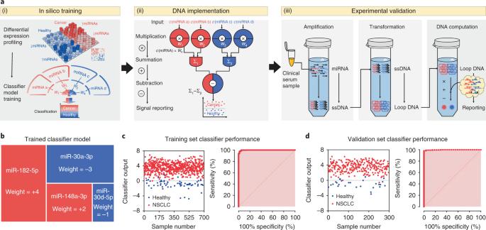 Cancer diagnosis with DNA molecular computation