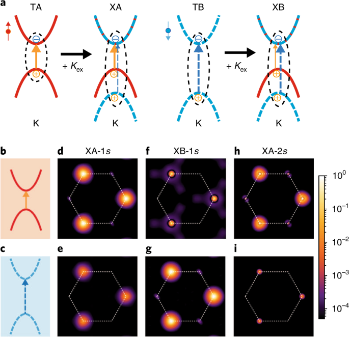 Exchange-driven intravalley mixing of excitons in monolayer