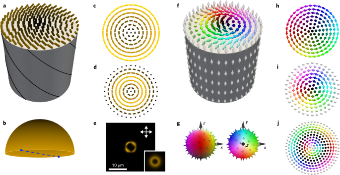 Two-dimensional skyrmion bags in liquid crystals and ferromagnets