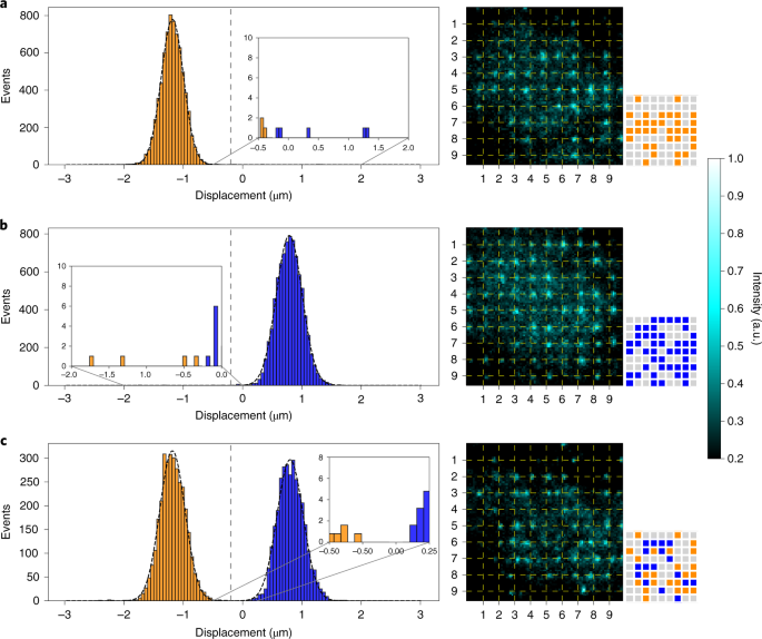Stern–Gerlach detection of neutral-atom qubits in a state-dependent optical lattice