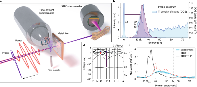 Attosecond screening dynamics mediated by electron localization in