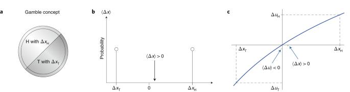 The ergodicity problem in economics